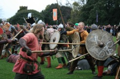 Viking battle in Dublin