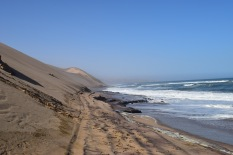 Where the sea meets the Namib desert