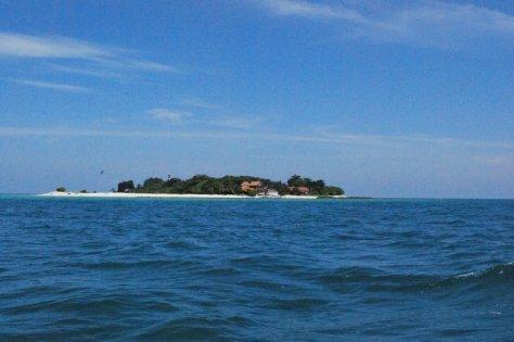 Turtle_Island